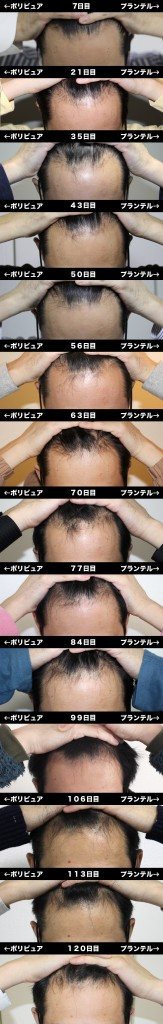 7_120_hikaku