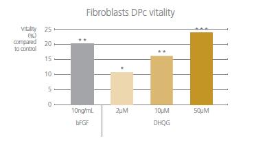 ficroblasts